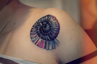 Sea Shell Tattoo